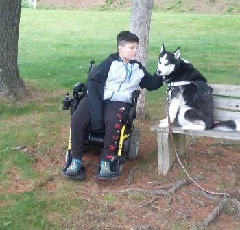 Boy seated in power wheelchair on grass with tree roots, leans to pet a dog on a park bench.